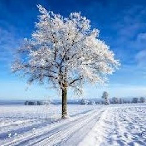 Happy Tree (Famiy-time, Scenery)