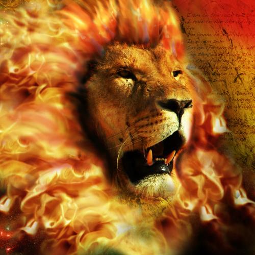 Lions Ft Breezy