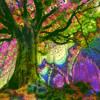 Flying Lotus & Samiyam - Don't Like The Tree Screw