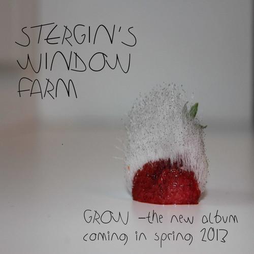 STERGIN'S WINDOW FARM