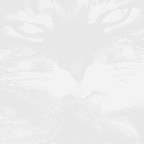 Fur [Iconoclast, Tk 9]