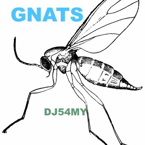 Gnats-Dj54my