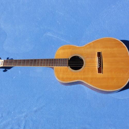 Miller DWS-01Prisoner Guitar