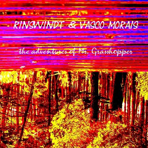 The adventures of Mr. Grasshopper - Chapter II. Vasco & Rinswindt