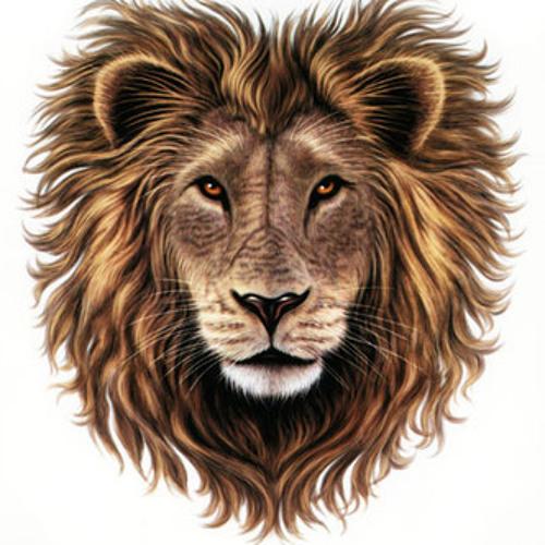 Uness - Lionheart (Alfonse remix)