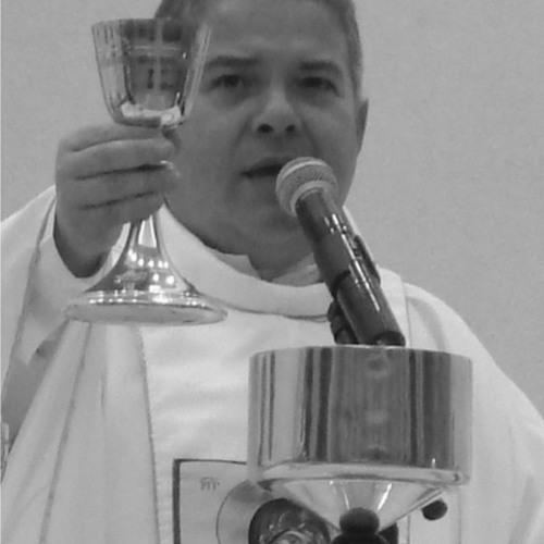 Homília Padre Pedro - 2º Domingo do Advento - 09/12/2012