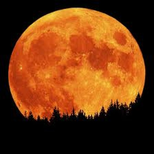 *Favor for Moonlight*