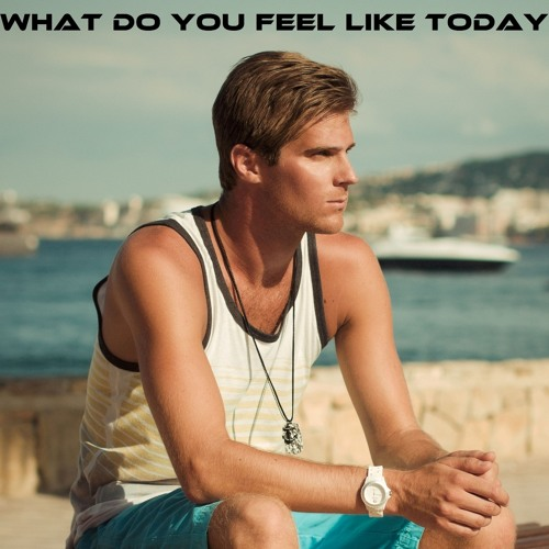 Basshunter - What Do You Feel Like Today (DEMO)