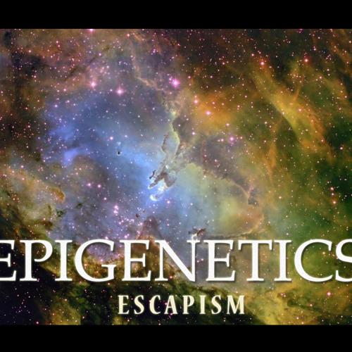 Epigenetics - We Have Arrived