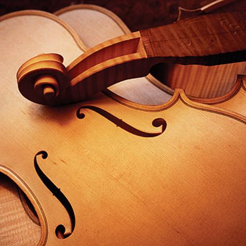 Miłosz S. - Strings