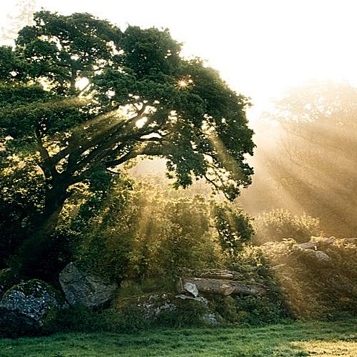 Sunshine Prod. by Jordan Strange