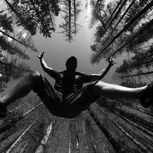 Acrid - falling sky