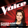 Torn (The Voice Performance) - Cassadee Pope