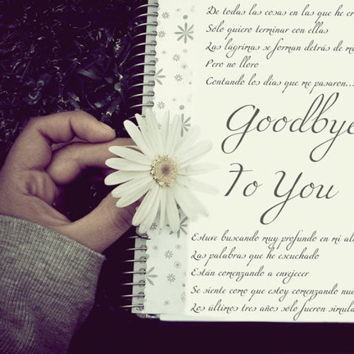 Good Bye to You!(cover)