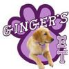 Commercial for Ginger's Eatz & Treatz
