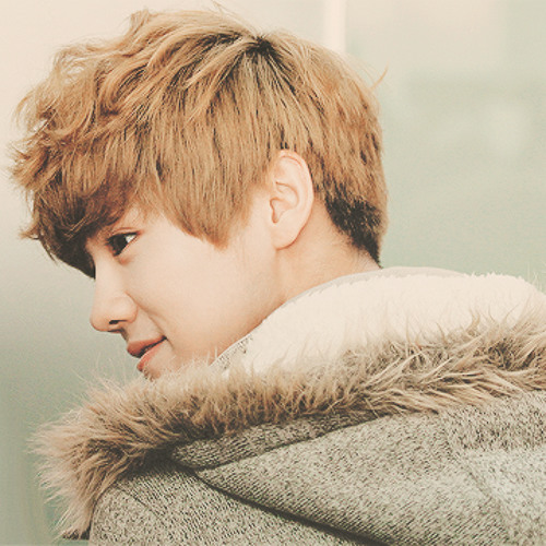 exo m luhan love the future you