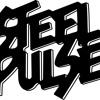 Steel Pulse Promo Mixdown-Love City Live! 2013