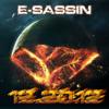 E-Sassin -