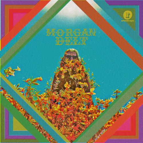 Morgan Delt - Make My Grey Brain Green