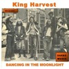 Dancing In The Moonlight Original Recording Mp3