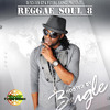 Reggae Soul 8