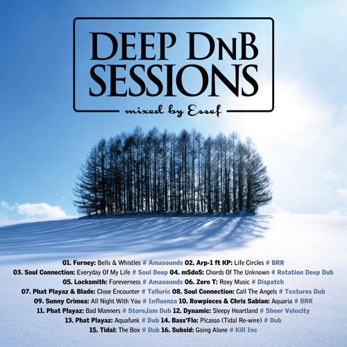 Deep DnB Sessions 16