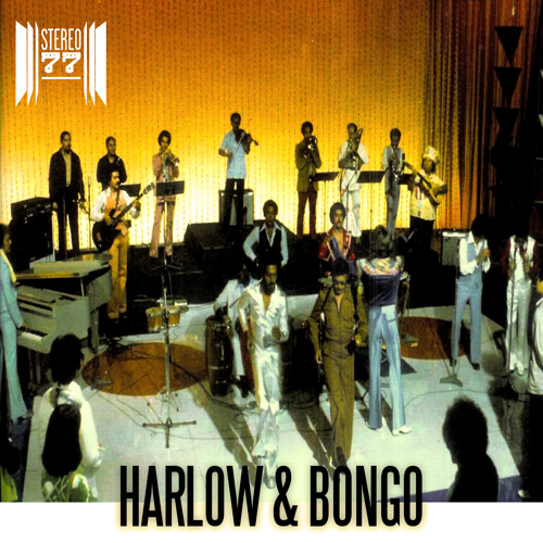 Harlow & Bongo (A Stereo 77 Ricanstruction)