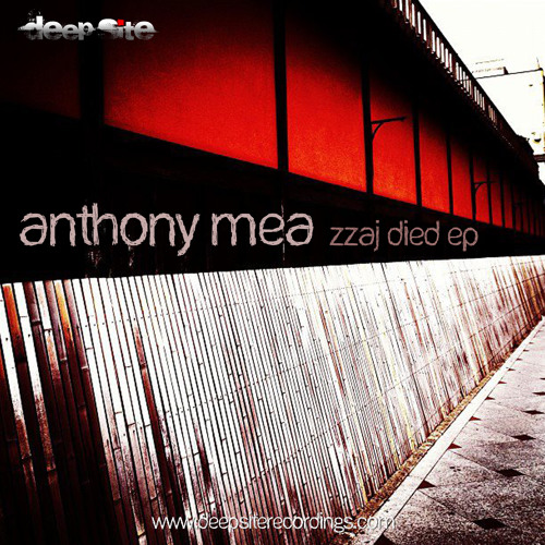 [DS011] Anthony Mea - Zzaj Died (Original Mix) [Clip]