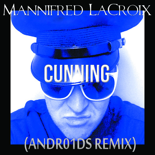 Cunning (ANDR01DS Remix)