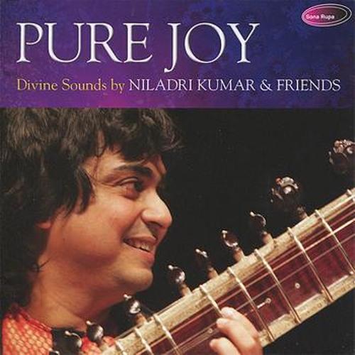 Pure Calmness - Raag Charukeshi - Instrumental - Niladri Kumar