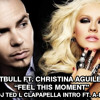 Pitbull - Feel This Moment ft. Christina Aguilera (DJ Ted L Clapapella Intro ft. A-Ha)
