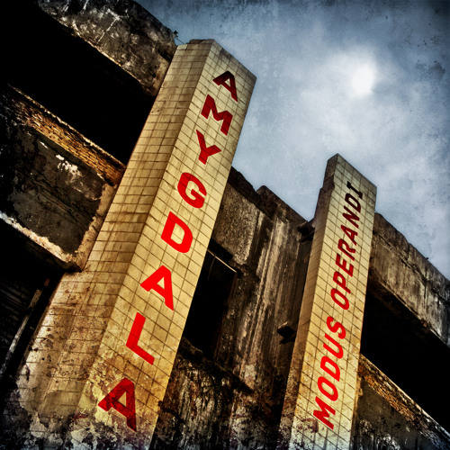 Amygdala - Made Up Mind