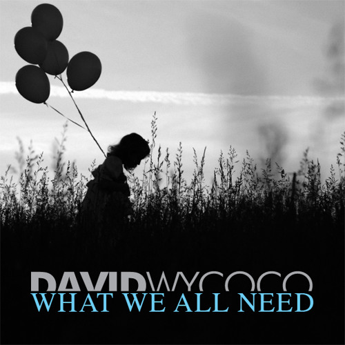 David Wycoco - What We All Need