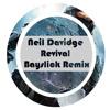 Neil Davidge - Revival (Bayslick remix) (Dutch 1st place)