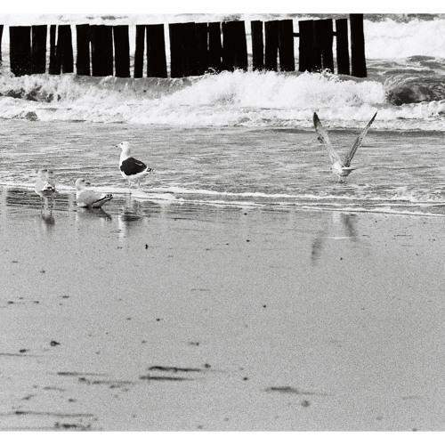 Seasidetrip 04 by ColtEP