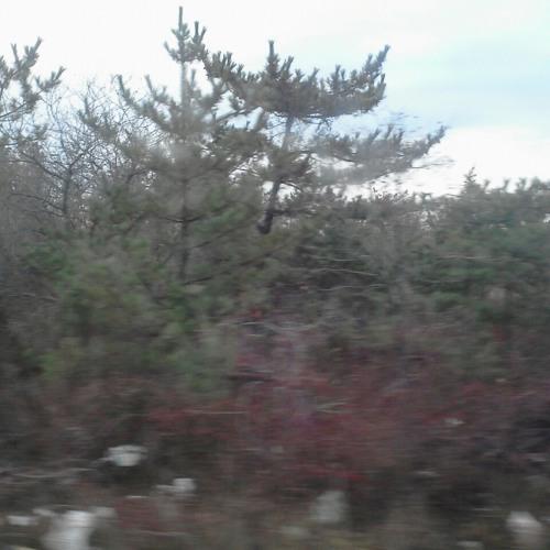 Pastel Unicorns- Winter