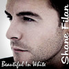 Beautiful In White   Shane Filan