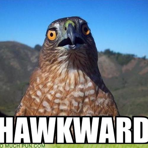 HAWKWARD VOICEMAILS