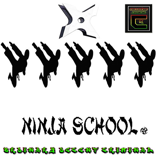 NINJA SCHOOL. ordinary decent criminal. (out now beatport collective records) 17th dec 2012