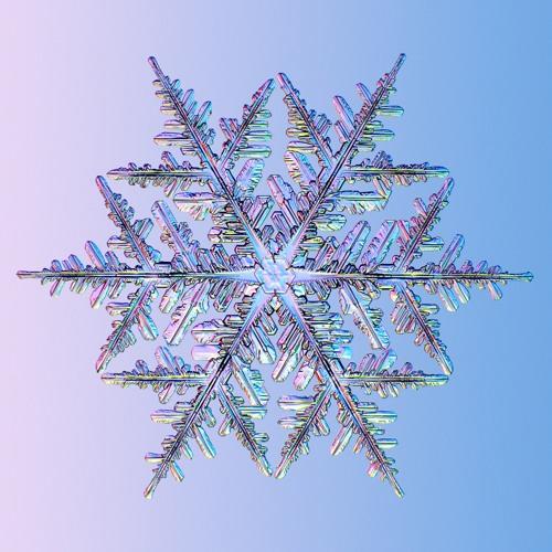 mina - It is freezing (demo)