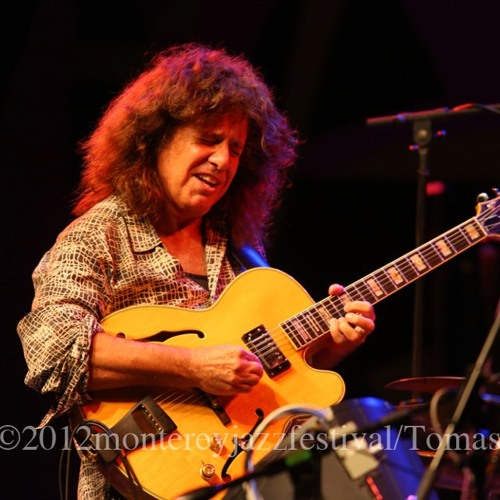 Pat Metheny - Artist Advice