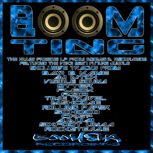 Boom Ting (clips) Free album download from the Boomsha Recs Family