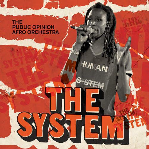 The Public Opinion Afro Orchestra - The System/Shake