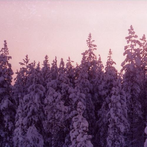 Purple Christmas (digital orchestra)