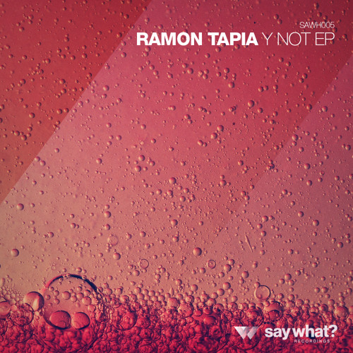 Ramon Tapia - Stupid (Original Mix) [Say What? Recordings]