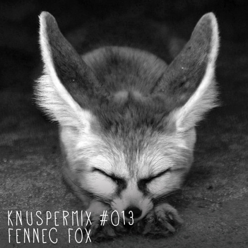 Knuspermix #013 - Fennec Fox