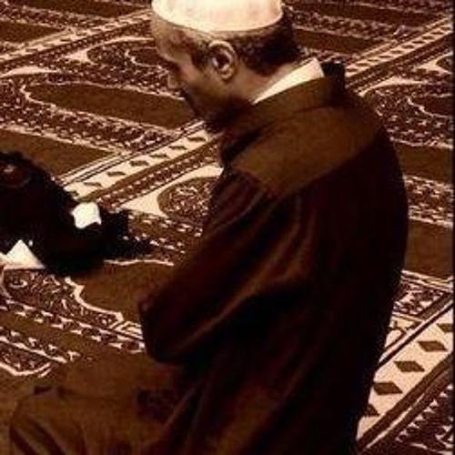 مولانا عماد عفت