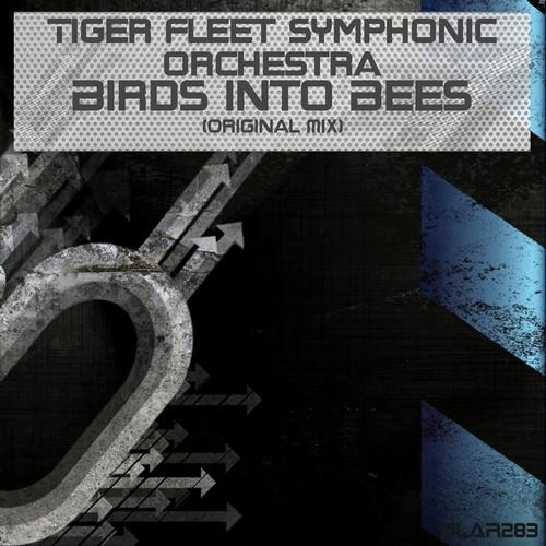 Birds Into Bees [OUT NOW on BEATPORT] [DLA Recordings]