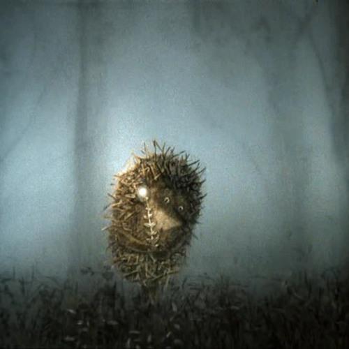 M.M.C. - Hedgehog In Fog (2005)