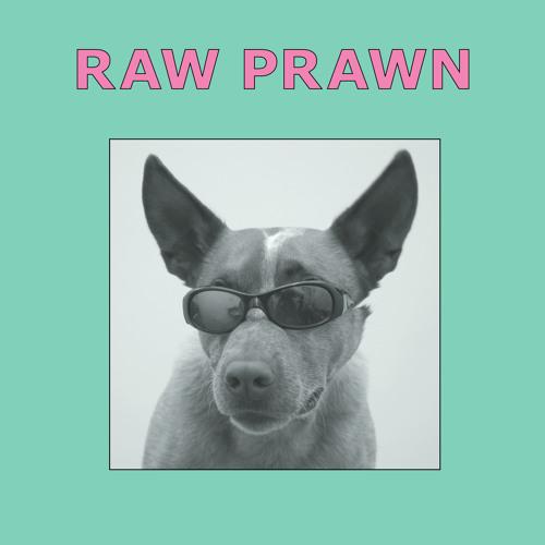 Raw Prawn - None Left